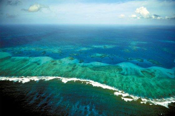 Unesco no puede determinar manejo de reserva Sea Flower | EL ESPECTADOR